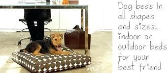small dog furniture. Designer Dog Furniture Pet Beds Small Bed Cool .
