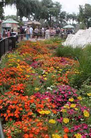garden festivals in florida rejoice