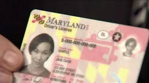 Licenses 000 66 Drivers Real Recall Face Id Maryland