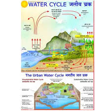 Water Cycle In Nature Chart India Water Cycle In Nature