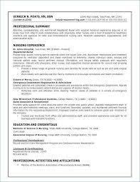 Sample Executive Summary Template Beauteous Executive Summary Resume Samples Elegant Example Of A Resume Elegant
