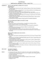 Analyst Regulatory Compliance Resume Samples Velvet Jobs
