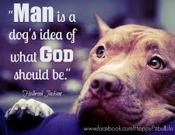 Pitbull Quotes 9 Stunning 24 Best Pitbull Quotes Images On Pinterest Pit Bull Pit Bulls