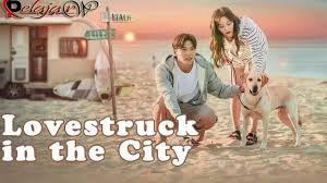 Full list episodes my lecturer my husband (2020) english sub | viewasian, inggit's life is perfect with her 5 best friends, a lover named tristan, and the love of her parents in jogja. Download Drama Korea Lovestruck In The City Subtitle Indonesia 2020 Streaming Terbaru Pelajarwp