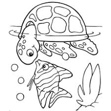 Small Picture Rainbow Fish Gives Superb Coloring Pages Fish Coloring Page and