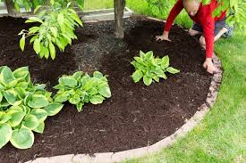 lawn edging ideas dirt