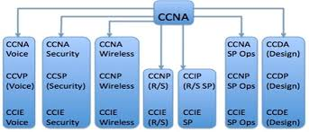 Cisco Certification Chart Setting Your Cisco Certification Goals For Maximum Success