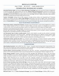 Software Architect Resume Examples Reference Architecture Resume