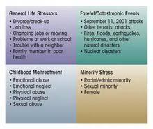 essay emotional health  essay emotional health