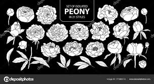 Set Of Isolated White Silhouette Peony In 21 Styles Cute Hand D