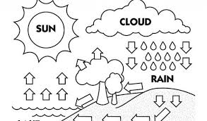 Small Picture Water Cycle Coloring Pictures Coloring Pages Ideas