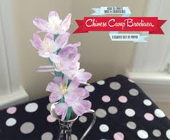 Flower Out Of Paper Paper Flower Diy Chinese Camp Brodiaea Folded Petal