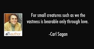 Carl Sagan Love Quote Delectable For Small Creatures Such As We The Vastness Quote