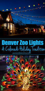 Zoo Lights Colorado Zoo Lights At The Denver Zoo In Colorado Is A Perfect Family