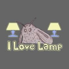Moth Loves Lamp Meme