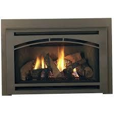 gas fireplace insert reviews best installation instructions inserts regency