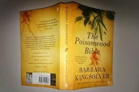 good essay topics poisonwood bible faith in the poisonwood bible essay topic example