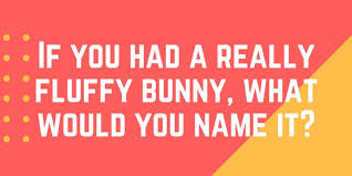 100 funny questions to ask your