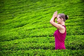 Image result for foreigners doing namaste