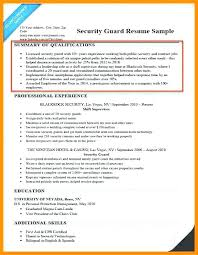 Professional Summary On A Resume Examples Sample Of Resume Summary