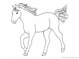Small Picture Simple Horse Drawings For Kids Images Pictures Becuo Horses