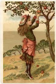 Vintage Apple Picking Image The Graphics Fairy
