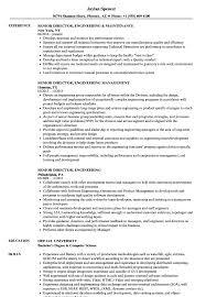 Director Of Engineering Resume Senior Director Engineering Resume Samples Velvet Jobs 5