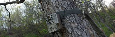 Browning trail camera review Trail Camera Reviews (Top-Rated Models 2019)