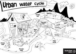 Small Picture Urban Water Cycle Colouring Sheet Gekimoe 109573