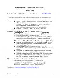 Resume Edge Professional Experience Examples For Resume How To Write Summary 45