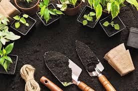 spring gardening prep gardening