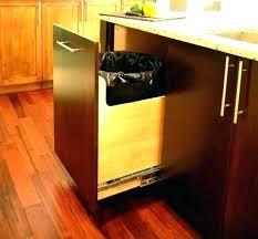 Kitchen cabinet trash can Waste Container Under Sink Garbage Bins Under Cabinet Pull Out Trash Can Under Sink Trash Can Garbage Can Albertapilotcarsinfo Under Sink Garbage Bins Under Cabinet Pull Out Trash Can Under Sink