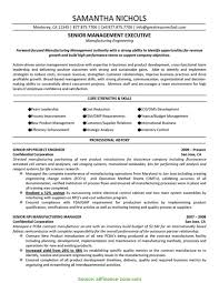 Pmp Resume Sample Newest It Project Manager Resume Template Free Resume Sample 15