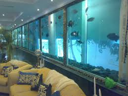 by The Biggest Fish Tank