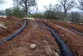 fill line for septic tank. Perfect For With Fill Line For Septic Tank I