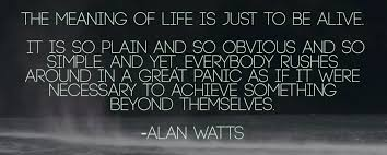 Meaning Of Quote Simple The Meaning Of Life Quote By Alan Watt GPoker