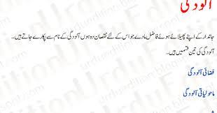 essay on maholyati alodgi in urdu essay on pollution in urdu