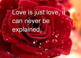 Valentines Quotes Unique 48 Heart Touching Valentines Day Quotes