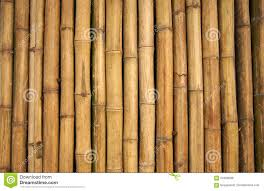 Bamboo Wall Design Images Bamboo Wall Stock Photo Image Of Line Closeup Background
