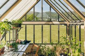 cultivar greenhouse