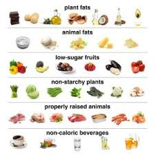 Low Sugar Diet Chart How To Start A Low Carb Diet Shopping Lists Recipes Plans