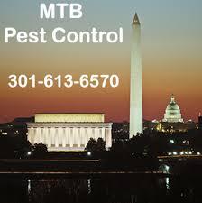 annapolis pest control.  Control Roach Control In Annapolis Annapolis Maryland Inside Annapolis Pest