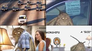 Meet The New Sensation Of Internet World Moth Memes