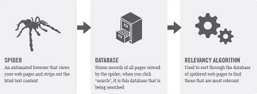 how do search engines work searchcatalyst the mechanics of a search engine a search engine spider a storage database and