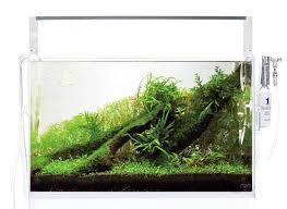 cube garden aquarium the best