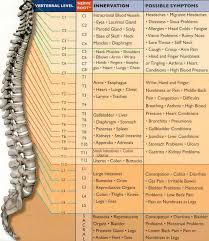 Meric Chart The Nervous System Reaches Every System In The