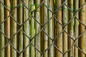 bamboo fence over chain link fence