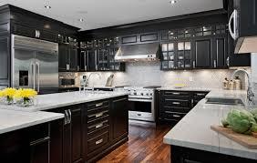 Black Lacquer Kitchen Cabinets Impressive Design Ideas 11 Inspirations For  Astonishing Modern Kitchen