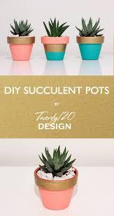 Succulent Pot Design Mini Terracotta Hand Painted Pot Coral Teal Gold