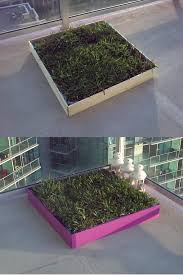 dogs bathroom grass. diy dog potty patch with real grass! great for an apartment patio! make the dogs bathroom grass a